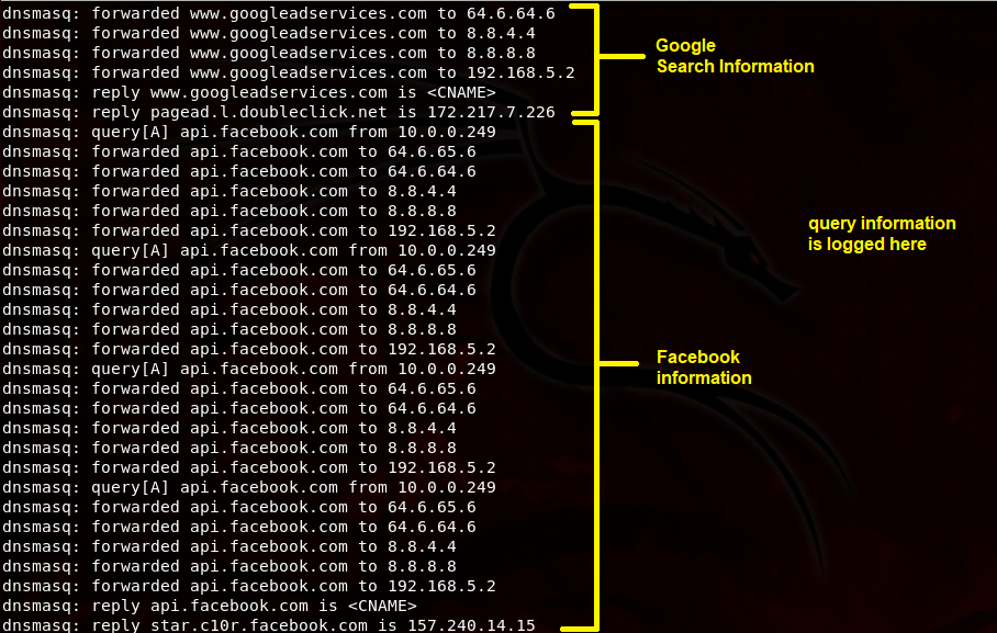 dns log information.png
